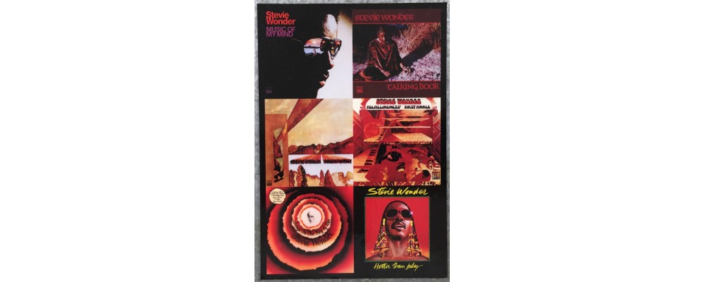 Stevie Wonder - Music - Magnet