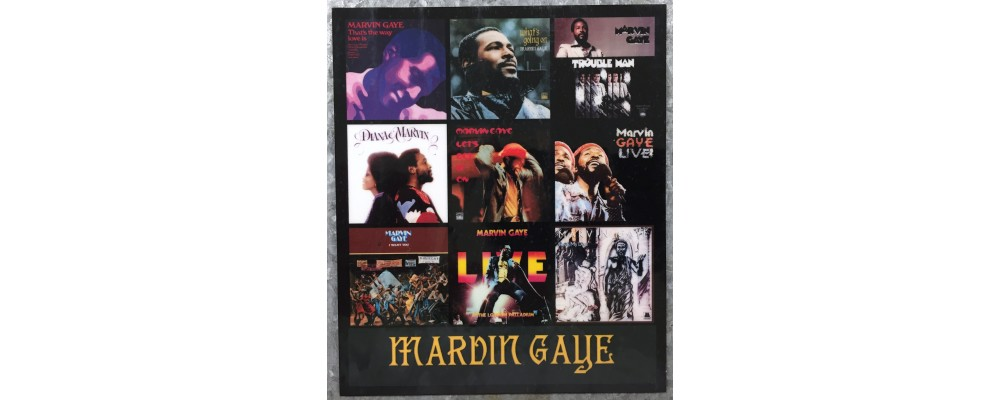 Marvin Gaye - Music - Magnet